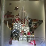 Make a Wish Holiday 2012 (Medium)