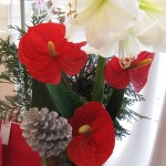 Christmas Arrangement (Medium)